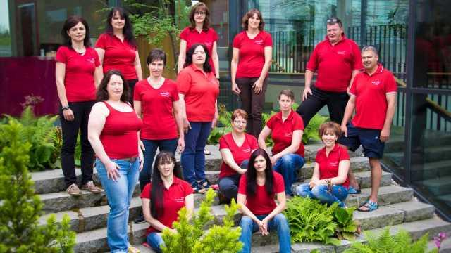 Team Wellness Juni 2016