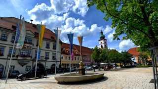 Karpfenbrunnen auf dem Maximilianplatz in Tirschenreuth