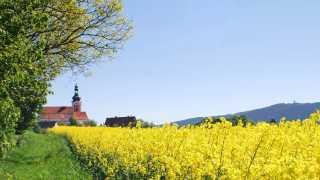 Tillenberg und Neuabenreuth