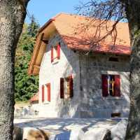 Waldhaus im Steinwald