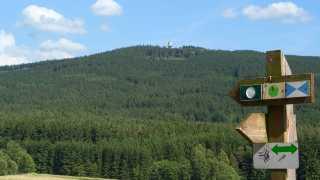 Wandern am Tillenberg in Neualbenreuth-Sibyllenbad